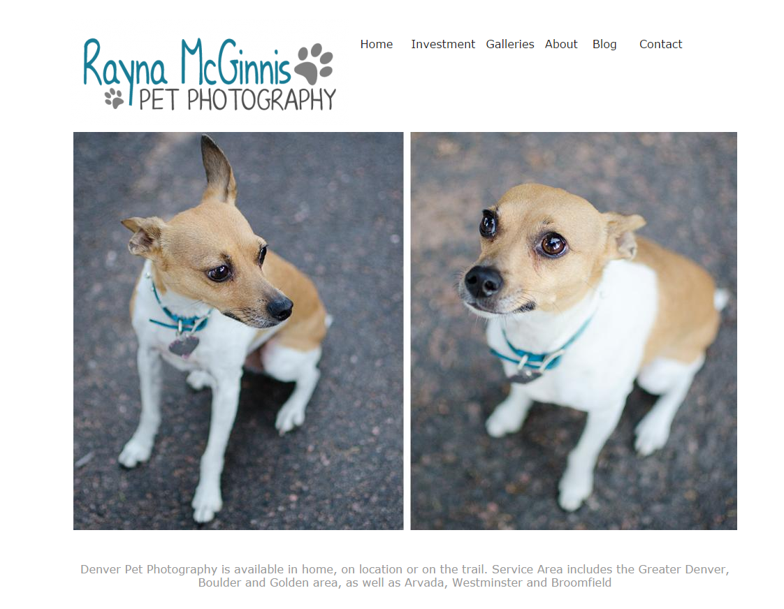 Denver-Pet-Photography Website Snapshot
