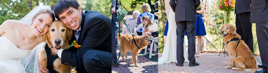 Dog Friendly Colorado Wedding Venues - Meadow at Marshdale