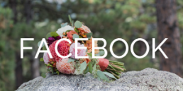facebook for colorado elopement photographer rayna mcginnis