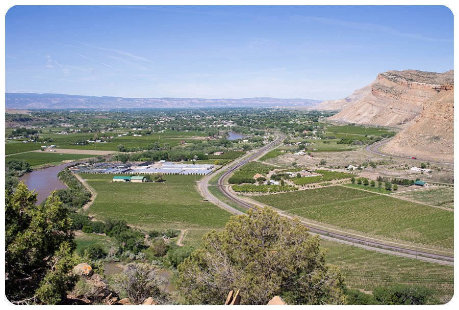 View of the Canyon Wind Cellars from a hiking trail near by