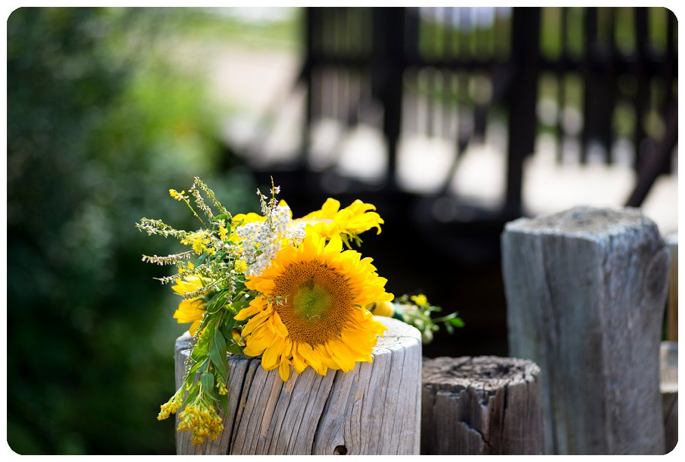 Sunflower Wedding Bouquet at Colorado Wedding by Rayna McGinnis