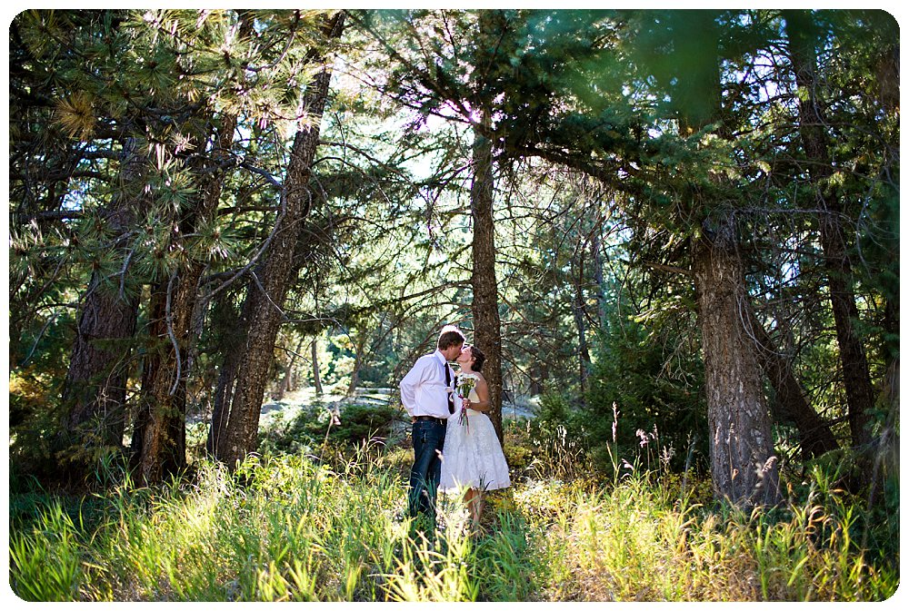 Grandview Terrace Wedding Pictures by Rayna McGinnis Photography at Meadows at Marshdale