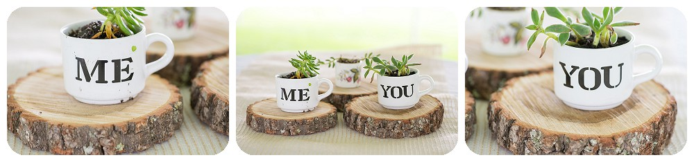 Succulent cups for bride and groom