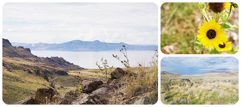 Dooley Knob hike at Antelope Island State Park