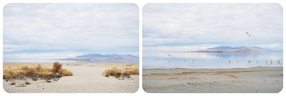 Great Salt Lake Beach - SLC Photographer
