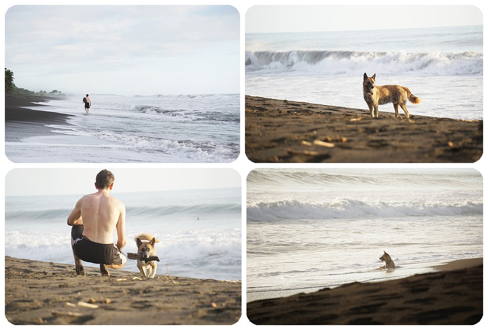 playing with random dogs at Playa Hermosa