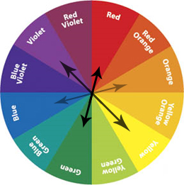 color wheel for picking colors for an engagement session