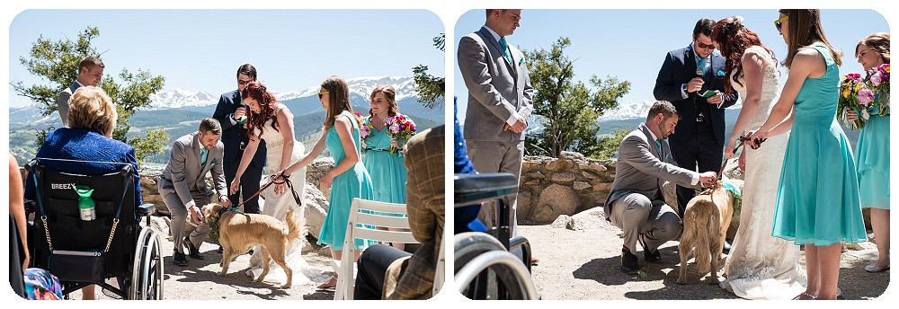Dog Ring Bearer at Sapphire Point