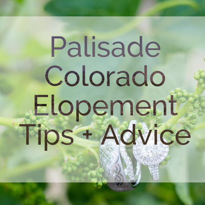 Palisade Colorado Elopement Photographer Gives Tips and Advice