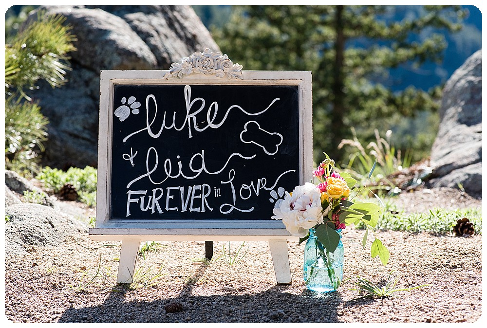 Dog elopement in the Colorado mountains