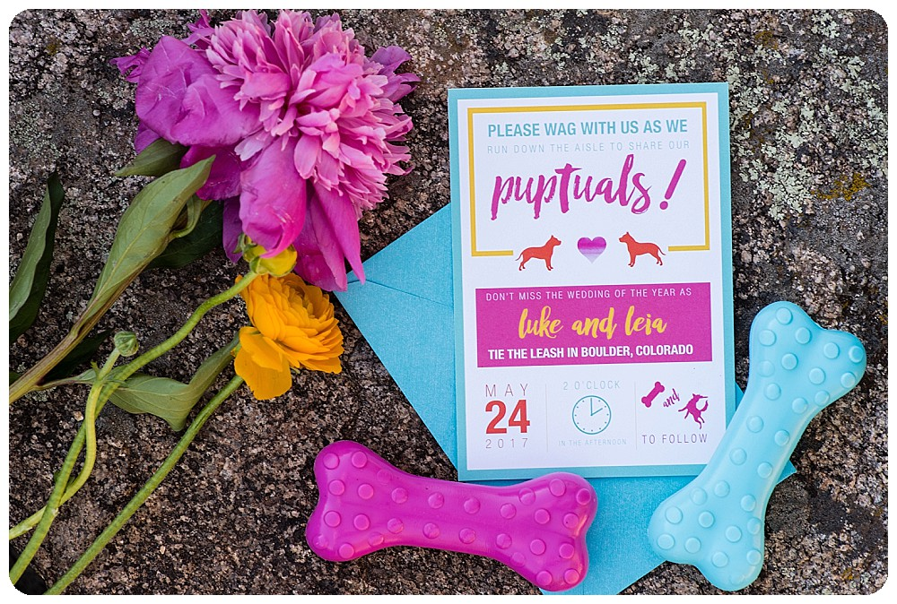 Adorable Dog Elopement announcement by Taylor Fisher