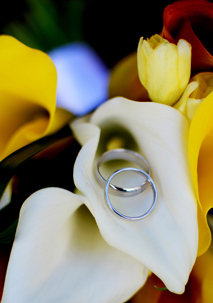 Ring Shots by Boulder Wedding Photographer Rayna McGinnis