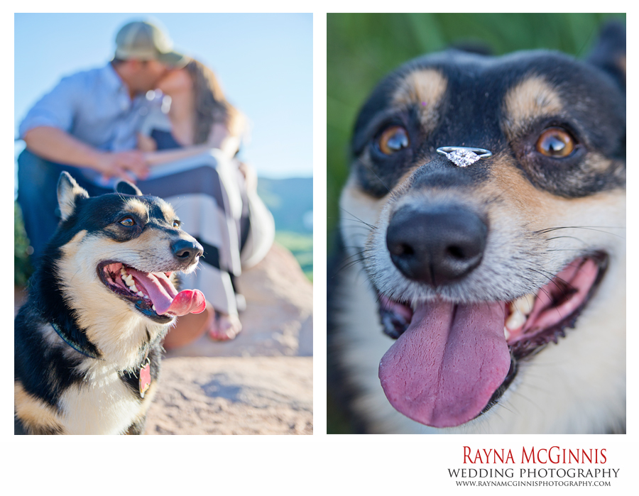 Littleton Engagement Photography with Dog