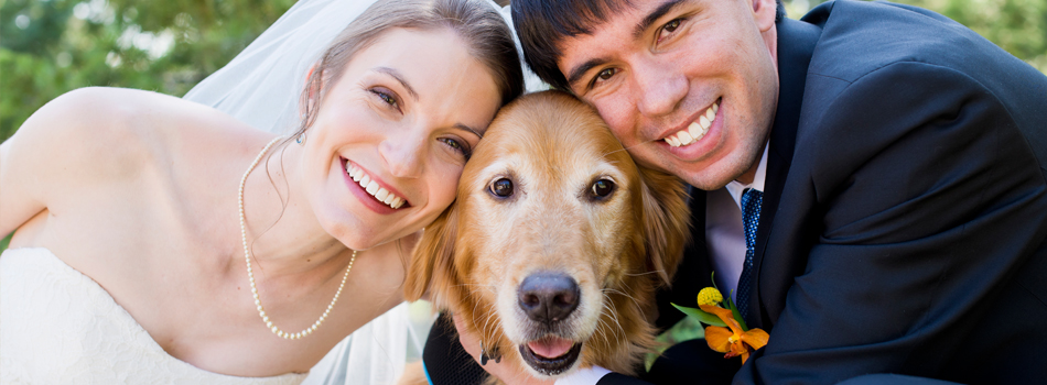 HAVING YOUR DOG IN YOUR WEDDING - Annika, Mark and Sidney the Dog