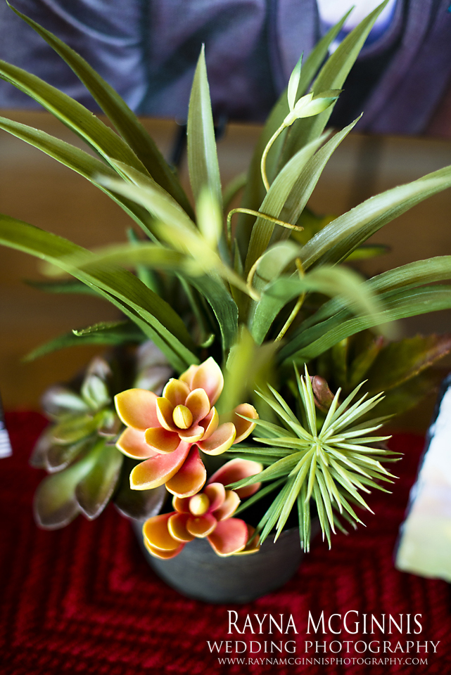 Succulents from Rayna McGinnis Photography Table at Evergreen Lake House Bridal Show