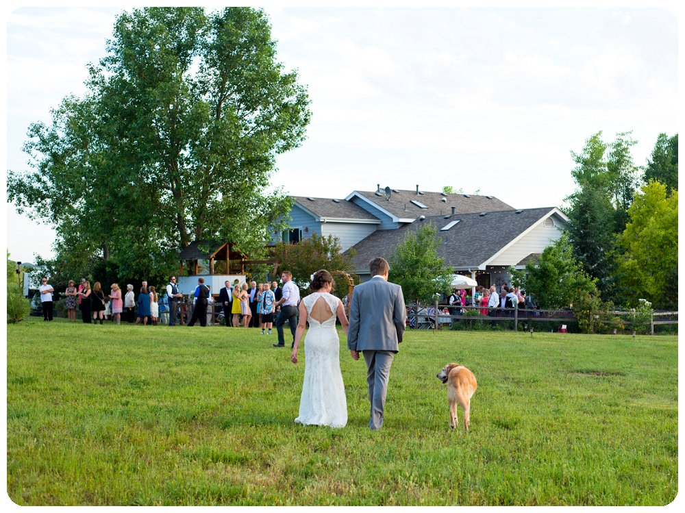 Loveland Wedding Photographer - Bride, Groom and dog walking to wedding reception