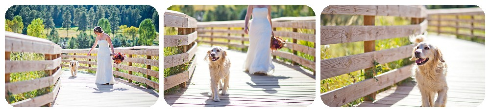 Wedding Portraits at the Evergreen lake house