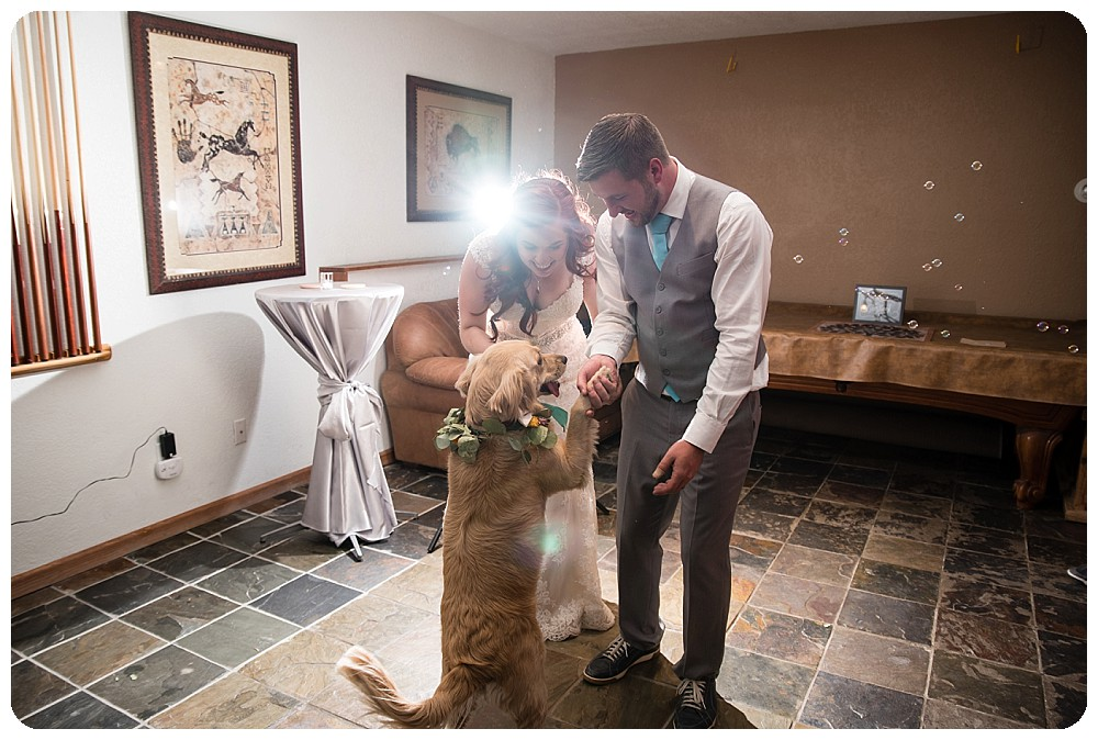 First dance at wedding with dog