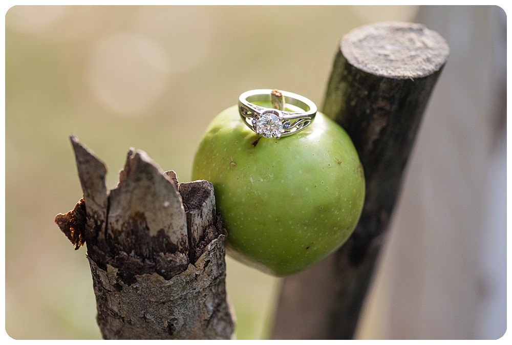 Apple Engagement Ring Photo