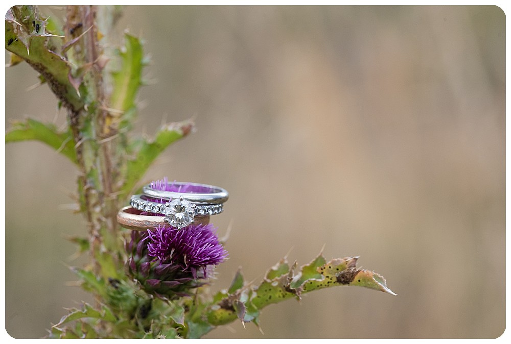 Ring shot by Colorado Wedding Photographer, Rayna McGinnis