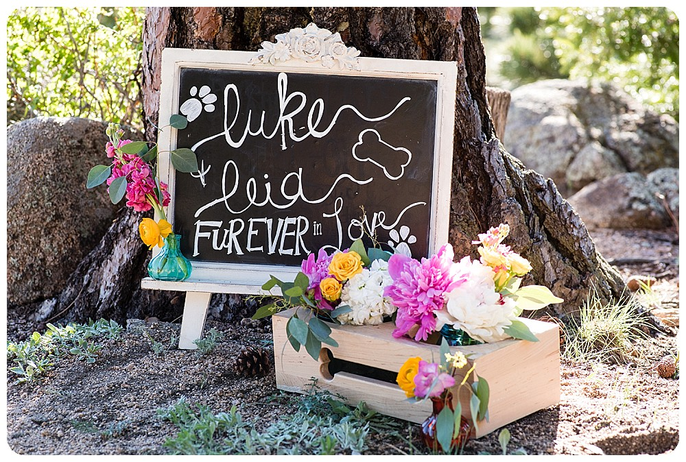 Elopement signs by Prive Event Design