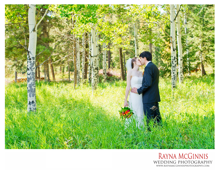 bridal portraits in green meadow in evergreen